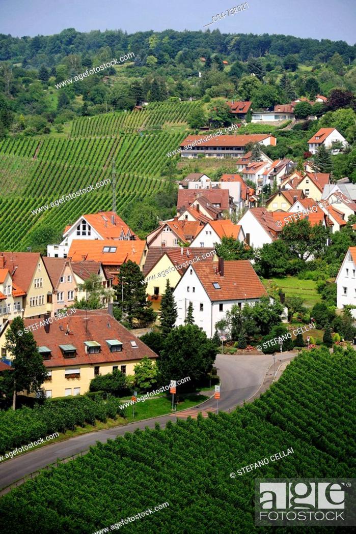 Stock Photo: Germany, Baden-Württermberg, vineyards.