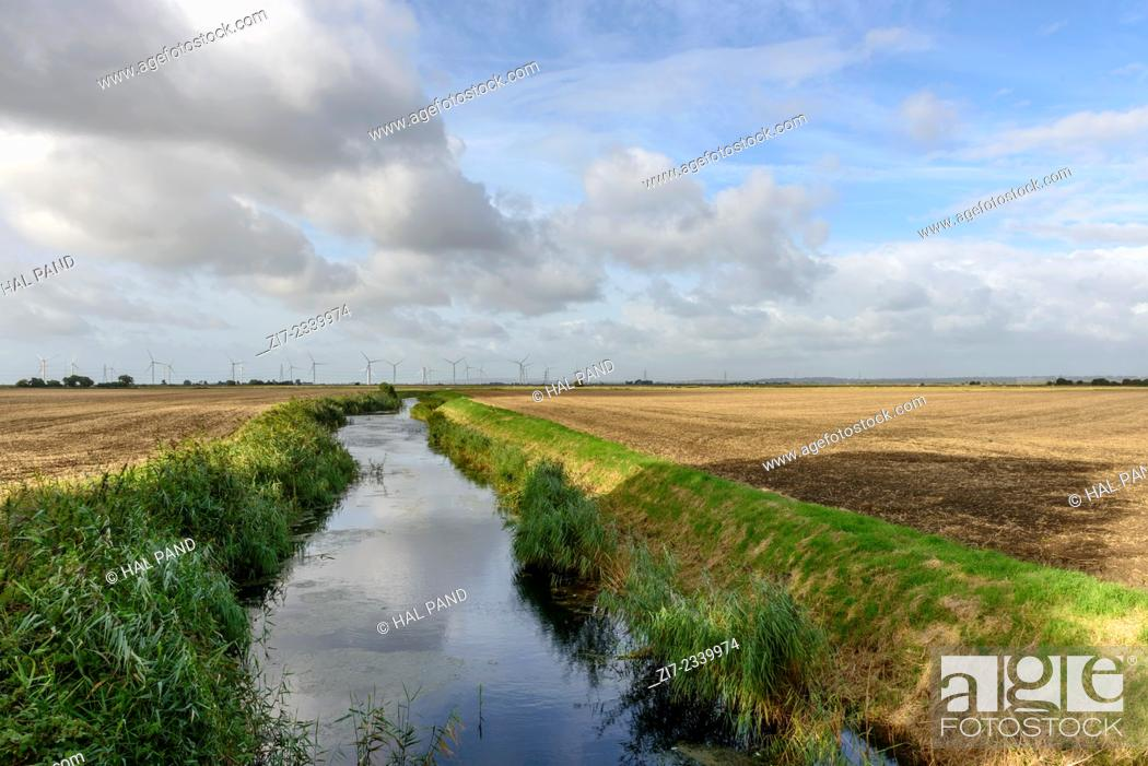Stock Photo: landscape of the marsh with a ditch between large fields, in distance wind turbines, under a bright sky, Romney Marsh, Kent.