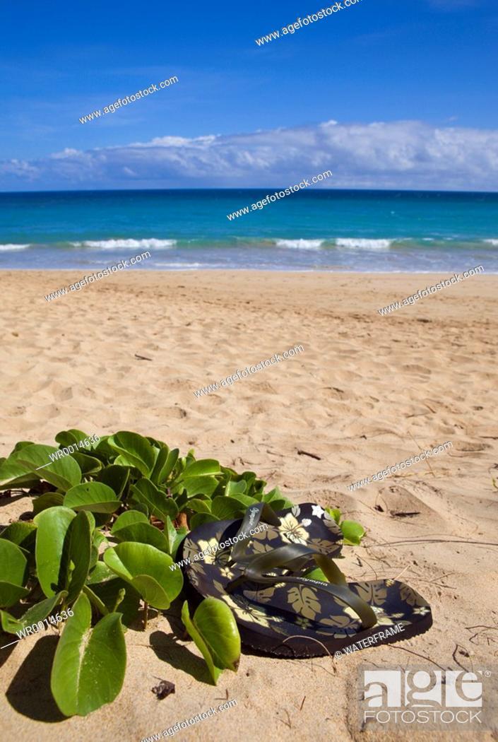 Imagen: Vacation at Hawaii, Maui, Pacific, Hawaii, USA.