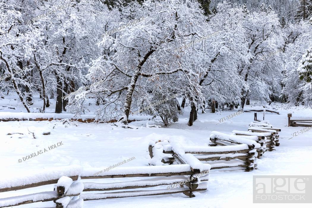 Stock Photo: Trail to Bridalveil Fall Yosemite National Park CA USA World Location.