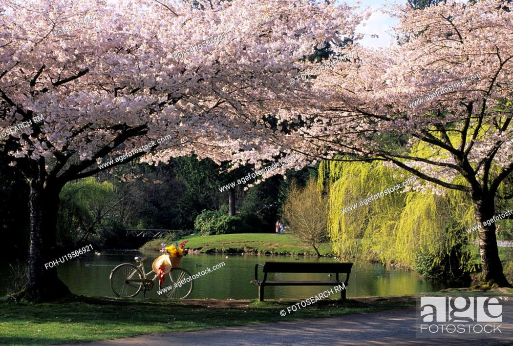 Stock Photo: flowers spring rw 10213 central park picnicing.