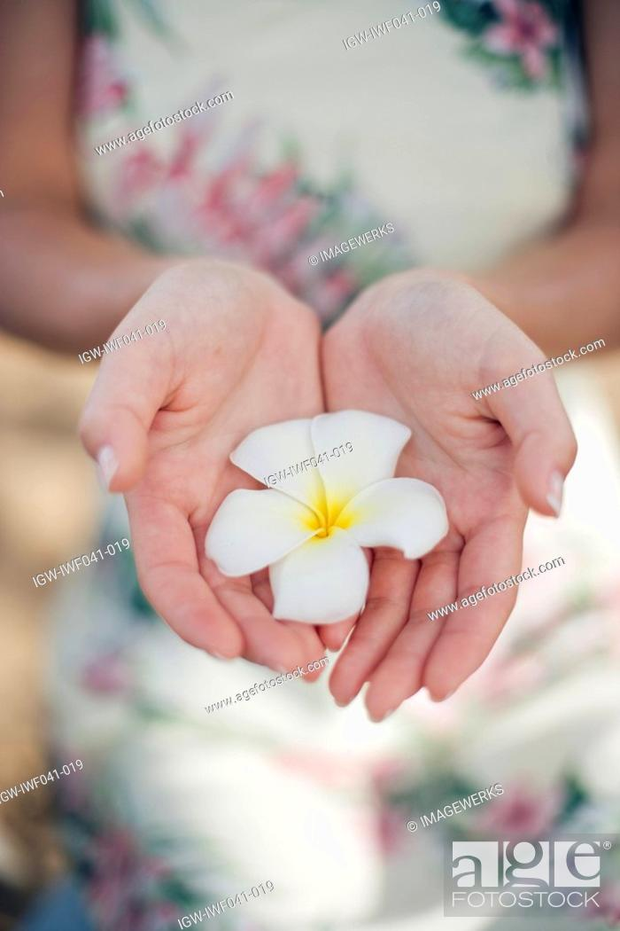Stock Photo: A woman holding flower.
