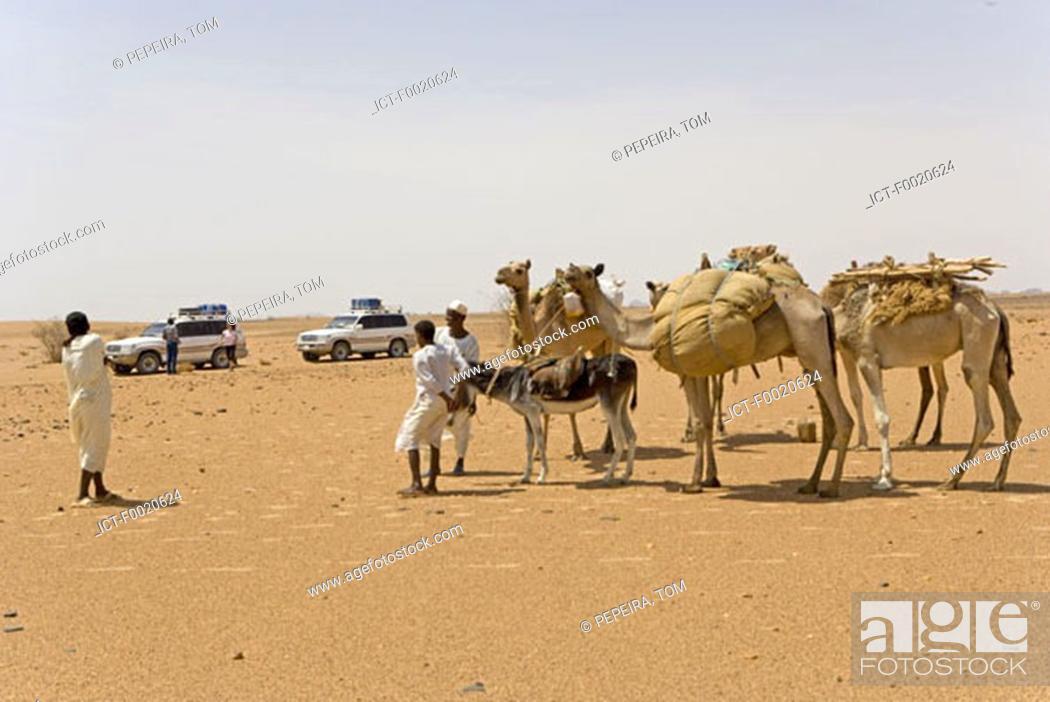 Stock Photo: Sudan, Eastern Sahara, Bedouin caravan.