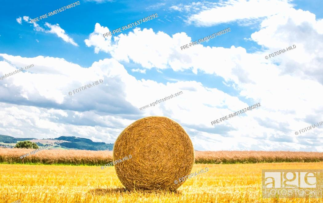 Stock Photo: Single round straw bale on a stubble field between Dankelshausen and Bühren, Samtgemeinde Dransfeld, Göttingen District, Lower Saxony, Germany.