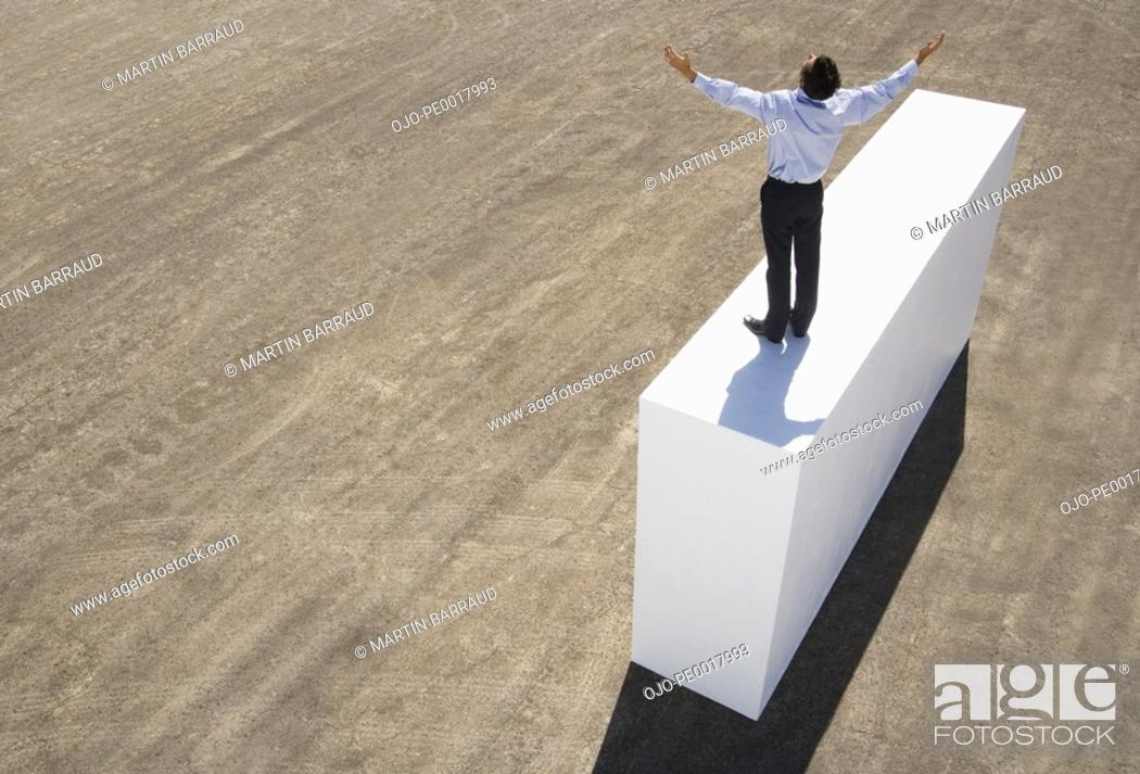 Stock Photo: Businessman standing on wall with arms up.