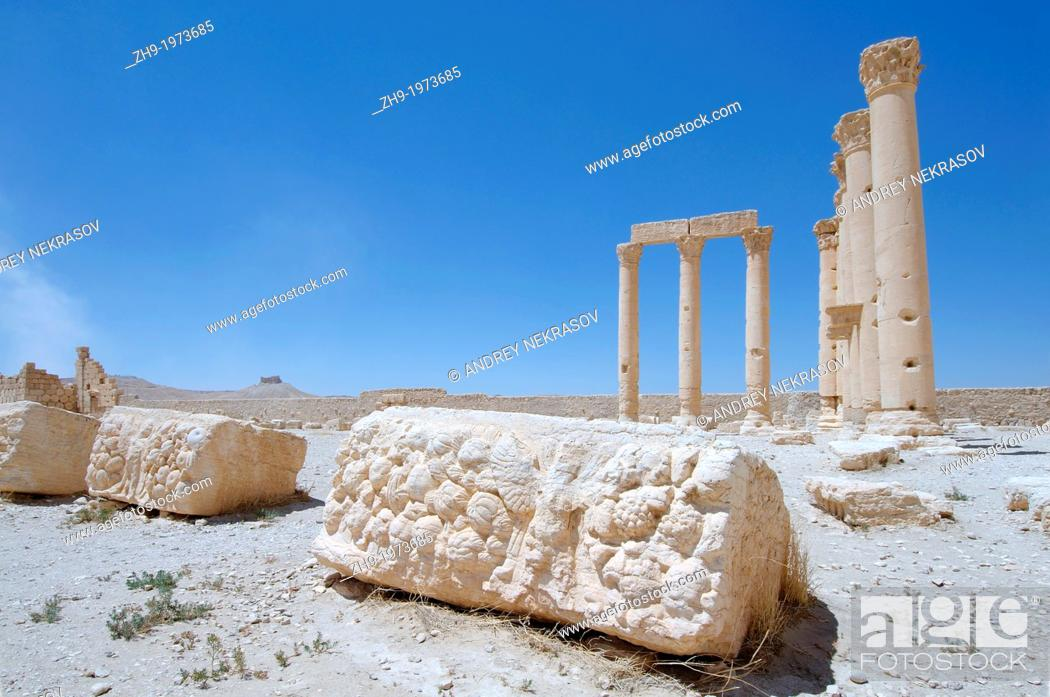 The Bas Reliefs On The Marble In Temple Of Temple Of Bel Temple Of