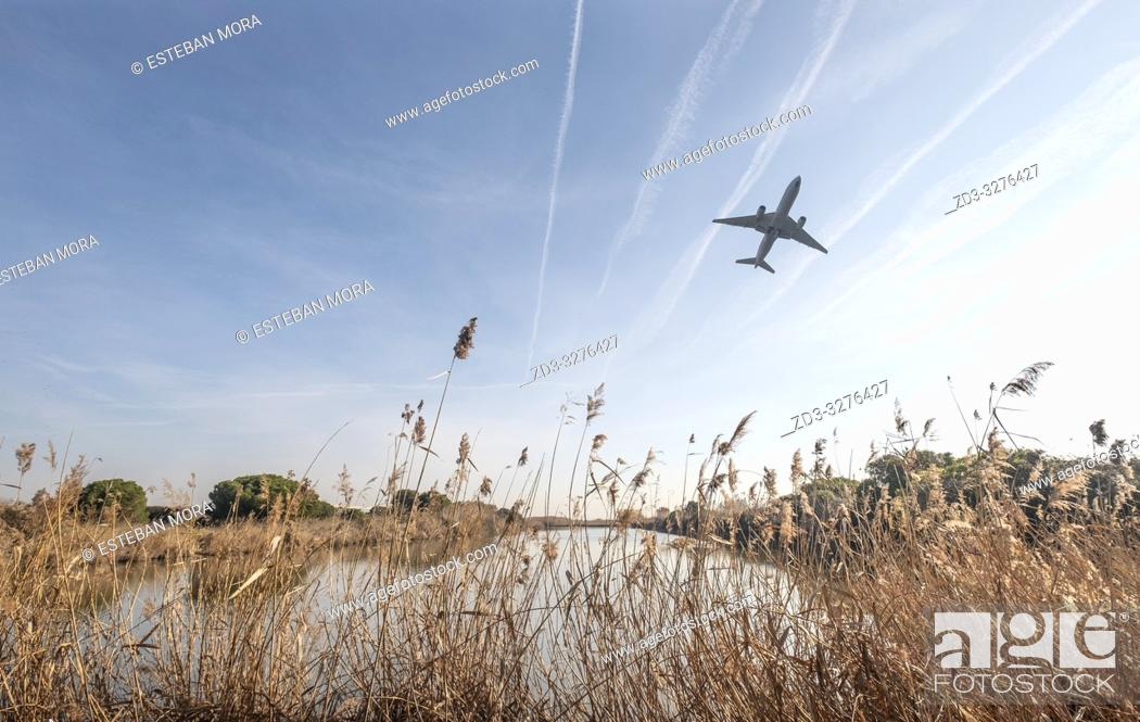 Imagen: plane bottom on blue sky with jet lines and a natural space in fore, ground, parc natural del delta del llobregat, barcelona, spain.