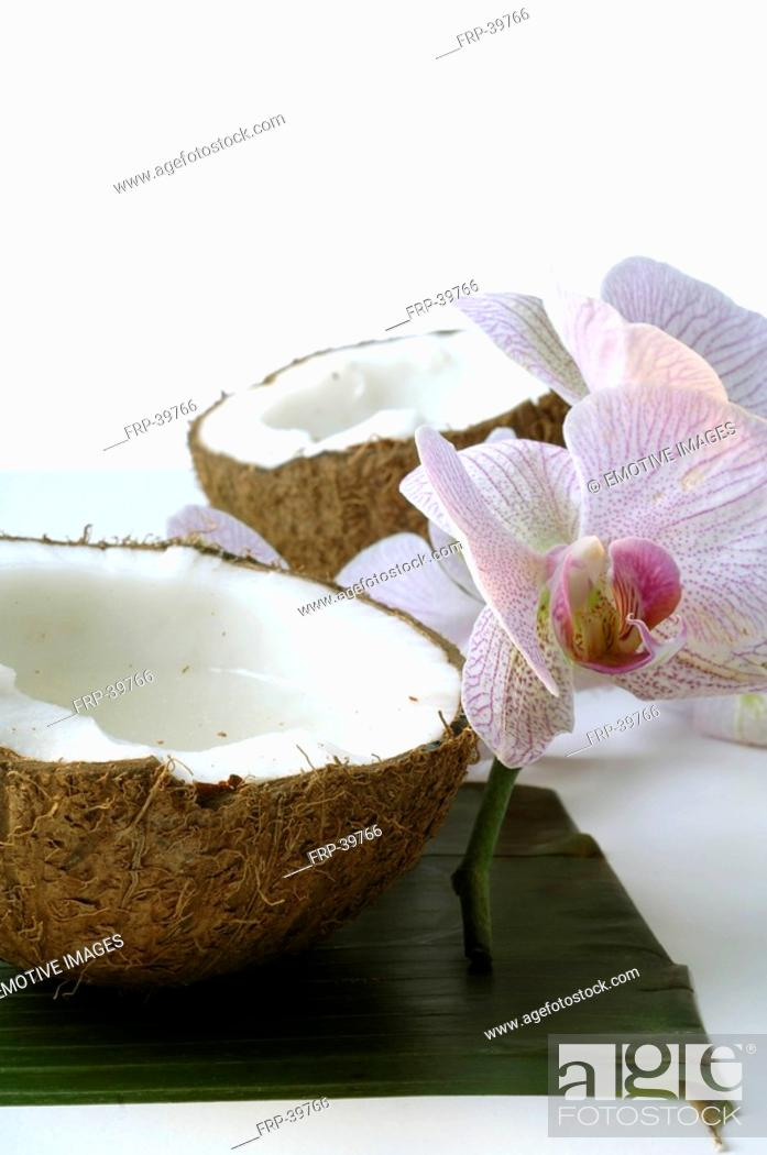Stock Photo: Sliced coconut and an orchid blossom.