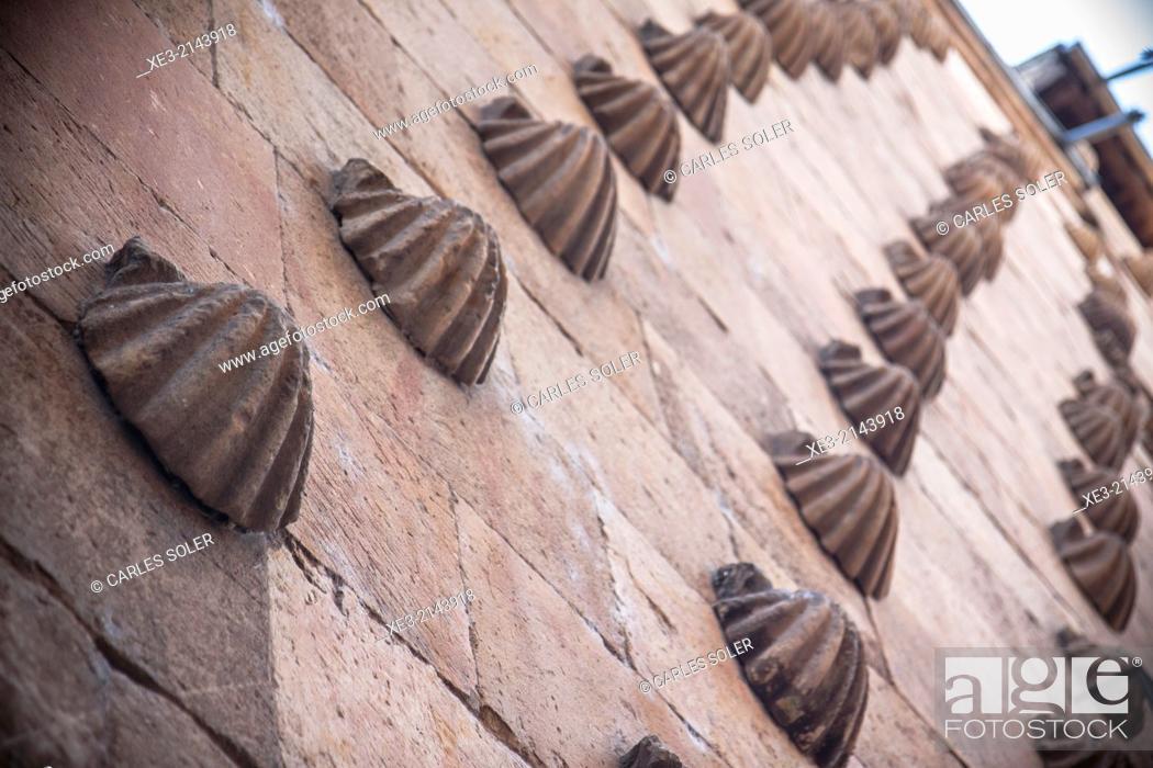 Stock Photo: Casa de las Conchas, Salamanca.