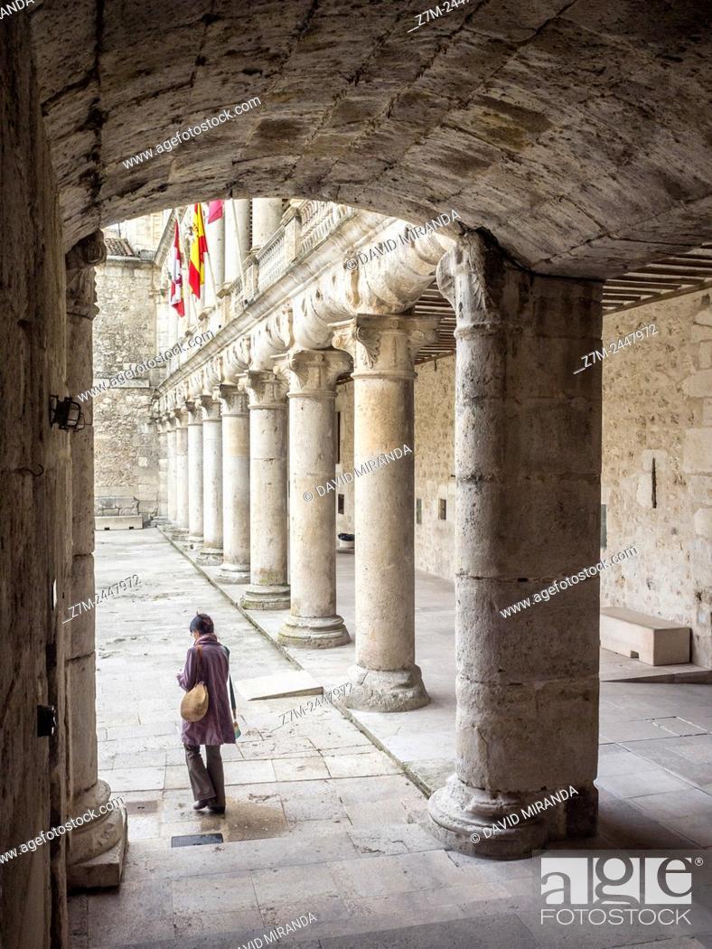 Imagen: Castillo Palacio del Duque de Alburquerque. Cuéllar. Conjunto histórico. Segovia province. Castile-Leon. Spain.