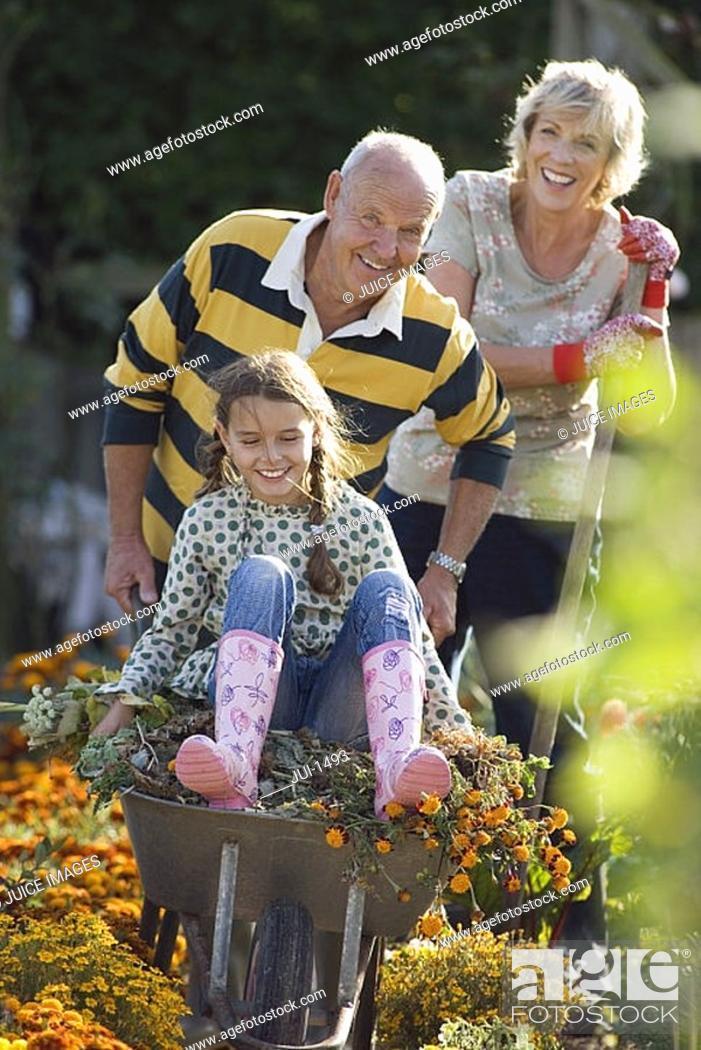 Stock Photo: Senior man pushing granddaughter 8-10 in wheelbarrow in garden, grandmother looking on, smiling.