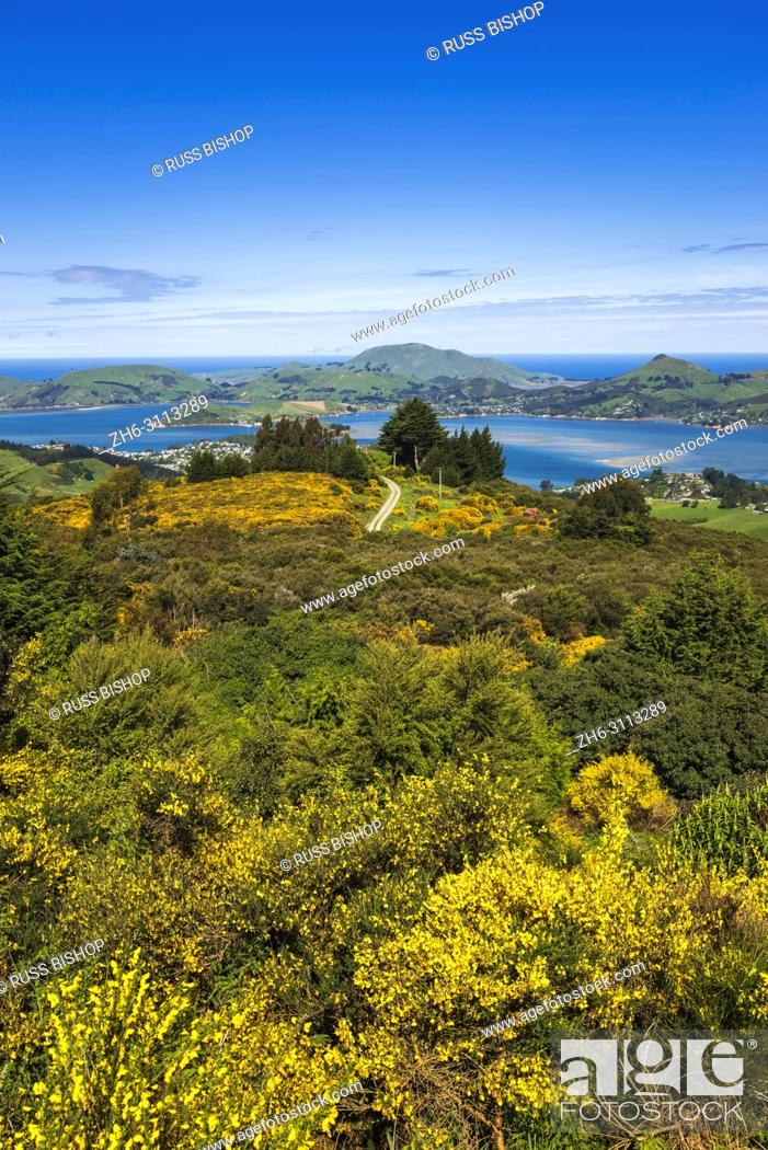 Stock Photo: Otago Peninsula and Harbor from Mount Cargill, Otago, South Island, New Zealand.