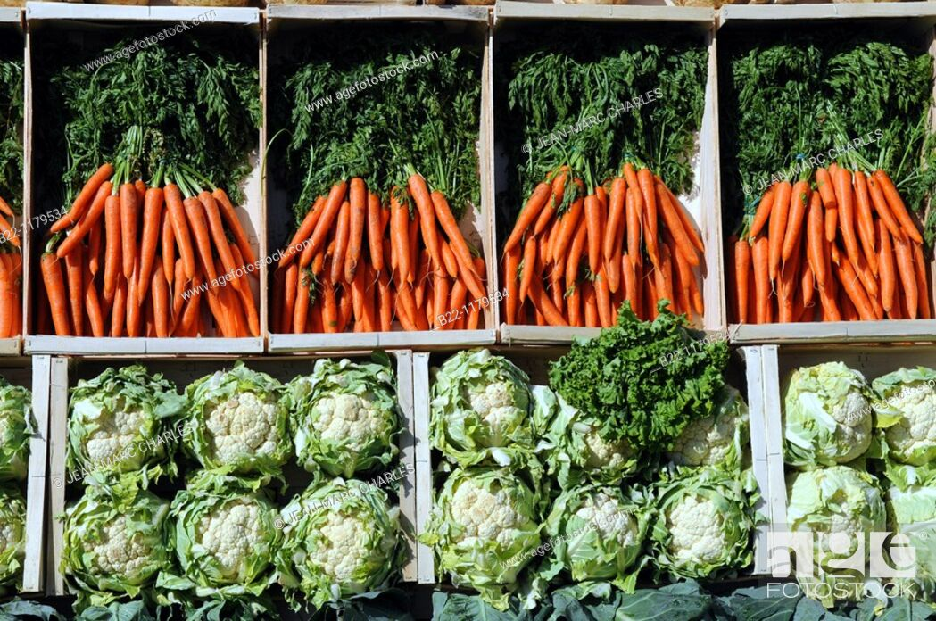 Stock Photo: Pyramid presenting vegetables of France  World day of biodiversity, Nature Capital has invested the cobblestones of the Champs-Elysées.
