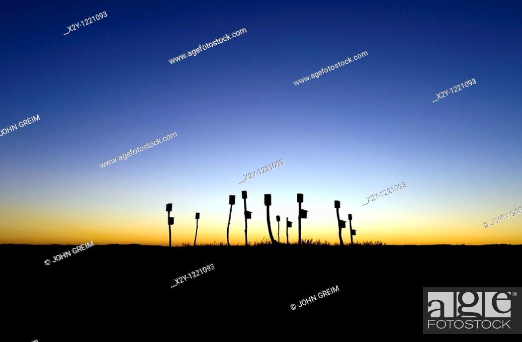 Stock Photo: Birdhouses placed in a salt marsh, Sandwich, Cape Cod, MA, Massachusetts.