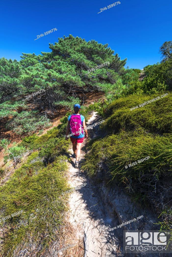 Stock Photo: Hiker on the Torrey Pines Trail, Santa Rosa Island, Channel Islands National Park, California USA.