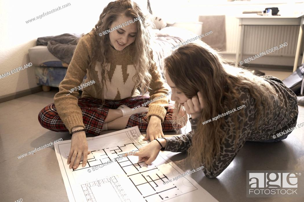 Stock Photo: two young women discussing construction plan at home.