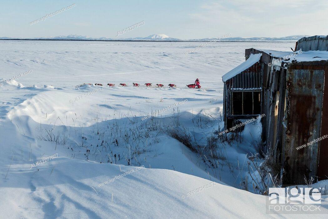 Imagen: DeeDee Jonrowe runs past abandoned buildings of Old Shaktoolik a few miles before the Shaktoolik checkpoint during Iditarod 2015.