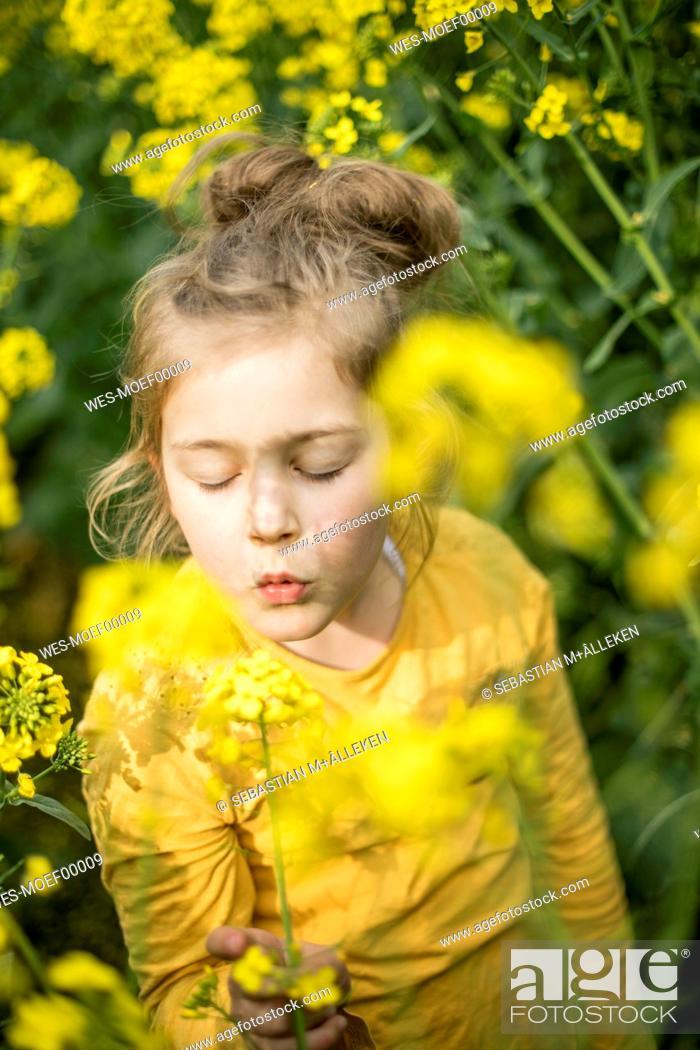 Stock Photo: Girl in rape field.