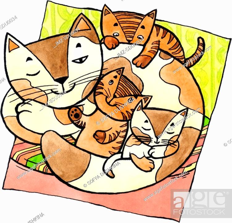 Stock Photo: A cat with kittens.