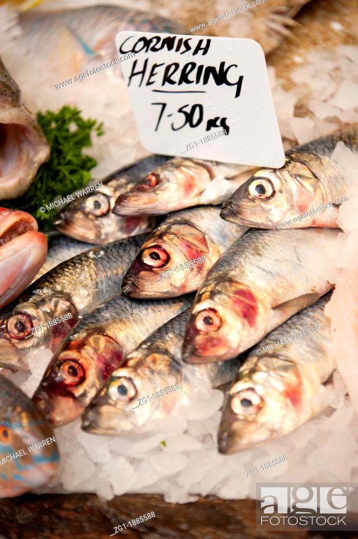 Photo de stock: Fresh Cornish Herring for sale in a fishmonger's market stall.