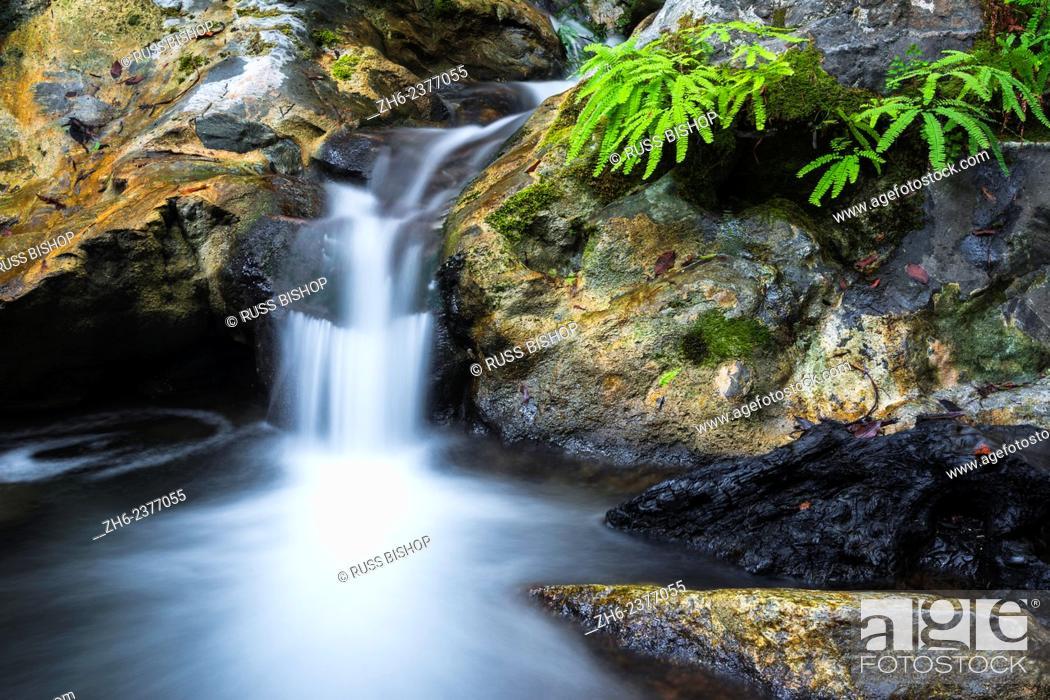 Stock Photo: Cascade on Limekiln Creek, Limekiln State Park, Big Sur, California USA.