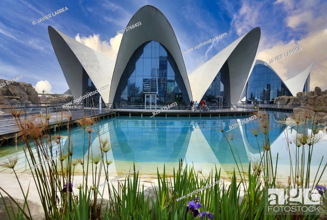 Imagen: L'Oceanografic, Ciudad de las Artes y las Ciencias, Valencia, Comunidad Valenciana, España.