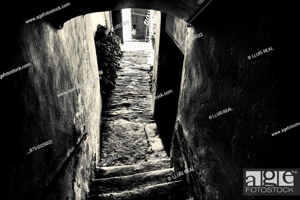 Stock Photo: Interior entrance and staircase in a village house. Santo- Pietro-de Tenda, Corsica, France, Europe.