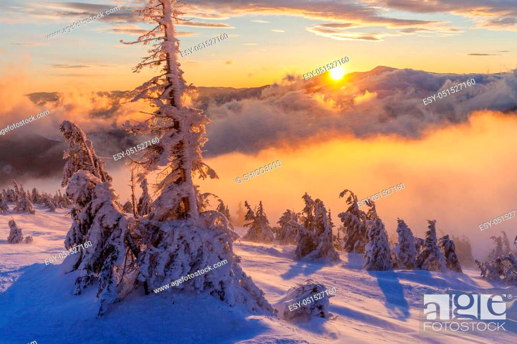 Stock Photo: Fantastic winter landscape. The Dramatic overcast sky.