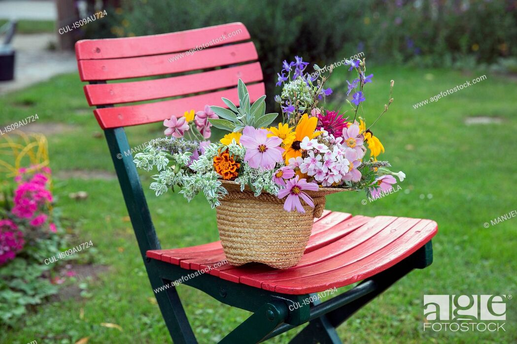 Stock Photo: Fresh cut flowers in straw hat, on garden chair.