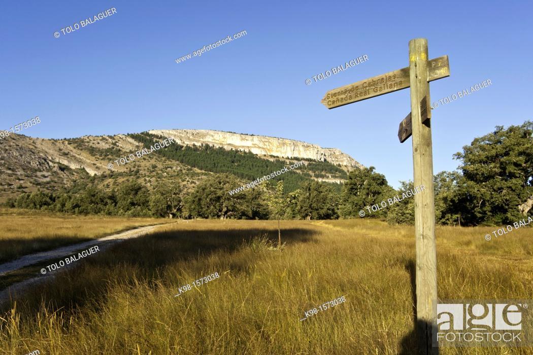 Stock Photo: Cañada Real Galiana Sierra de las Cabrejas Soria Spain.