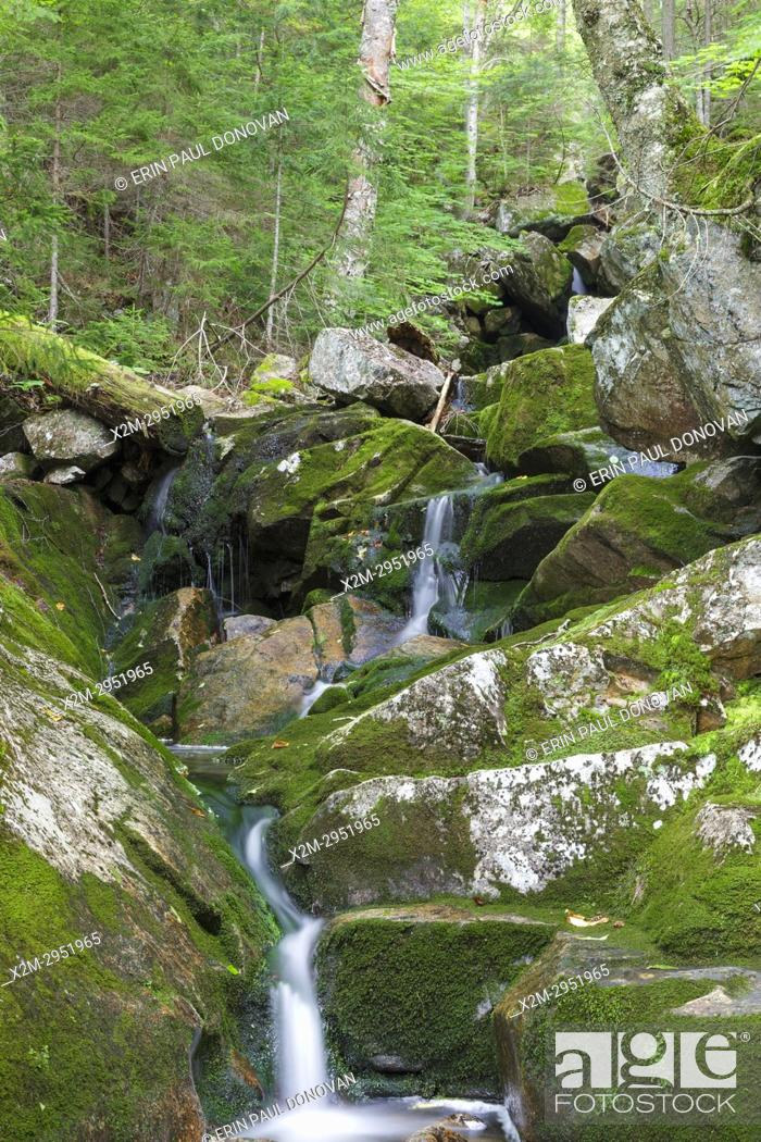 Stock Photo: Fleming Flume on Elephant Head Brook in Carroll, New Hampshire during the summer months.