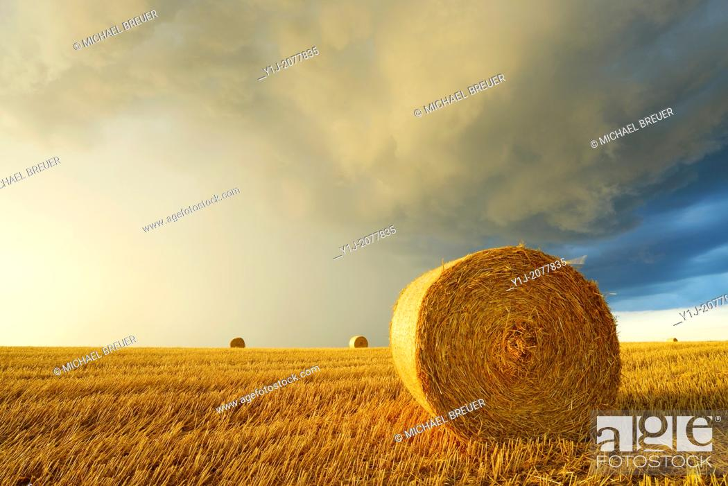 Stock Photo: Straw rolls on stubblefield and rain clouds, Hesse, Germany, Europe.
