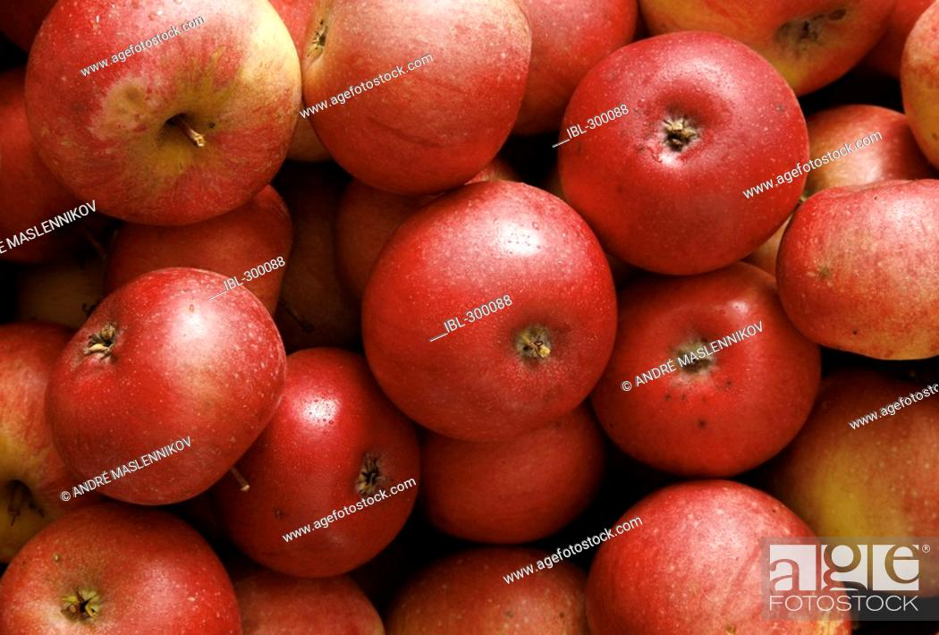 Stock Photo: Red apples.
