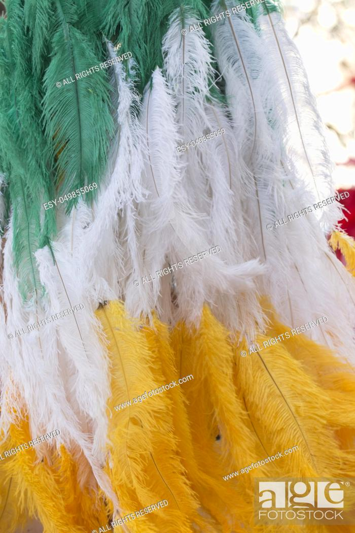 Photo de stock: Close up of colorful feathers of a Carnival suit.