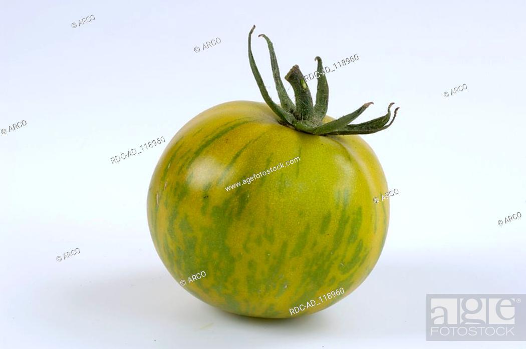 Stock Photo: Tomato  'Green Zebra' Solanum lycopersicum.