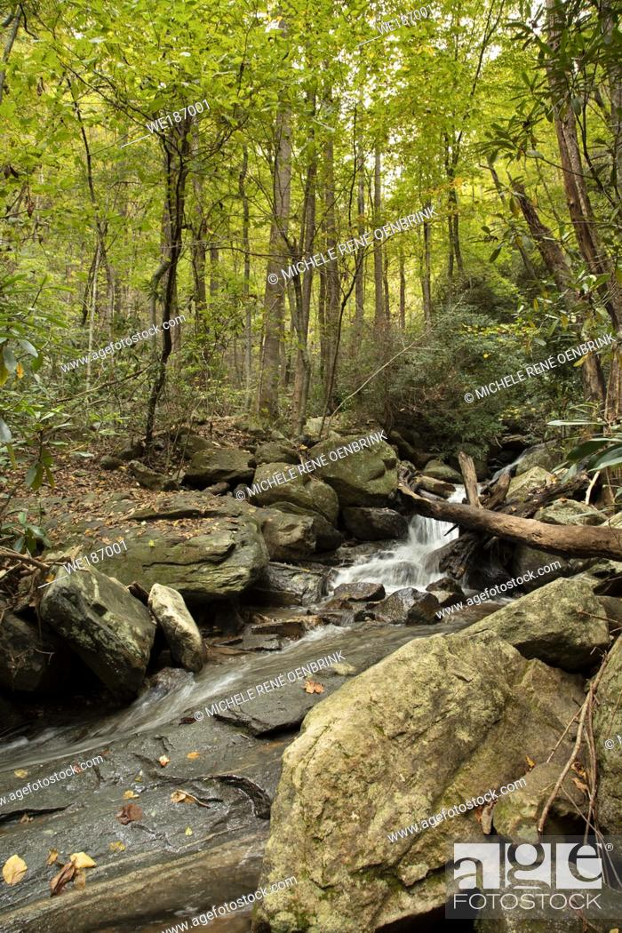 Stock Photo: Catawba Falls Trail east of Asheville North Carolina hiking trail, trekking through a mossy, shady forest valley to beautiful waterfalls in the Pisgah National.