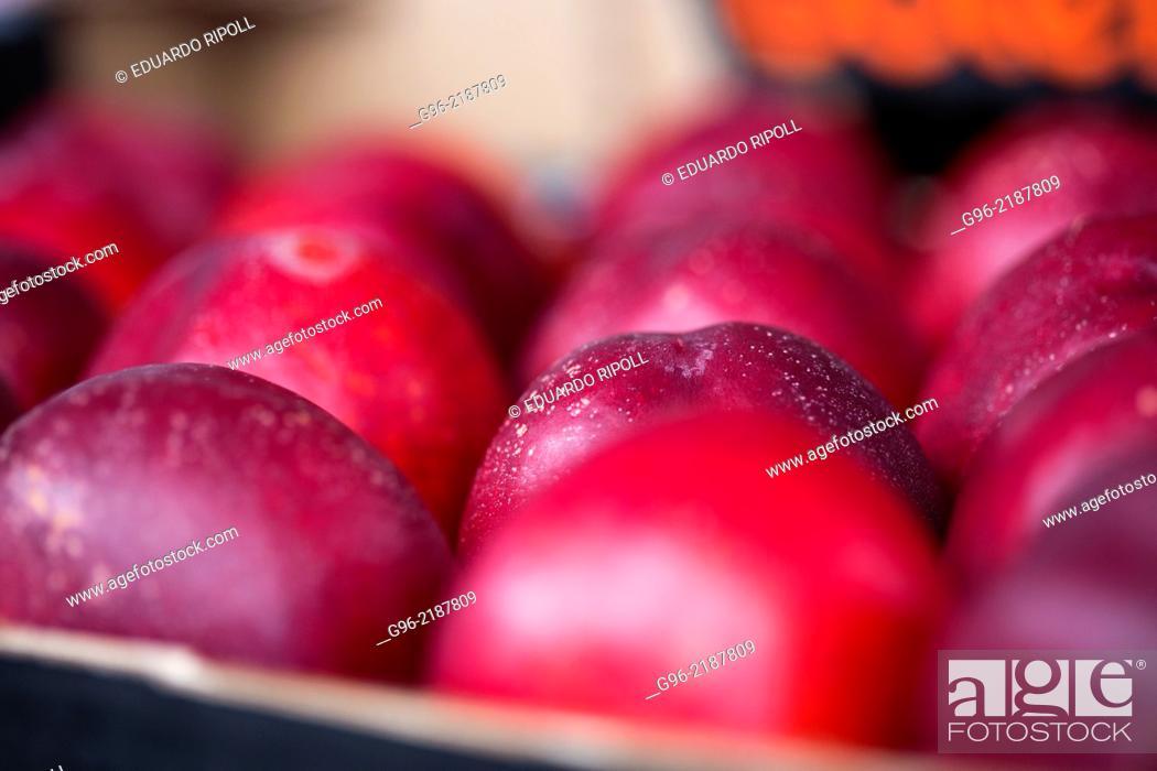 Stock Photo: Nectarine fruit at fruit processing factory. Spain.