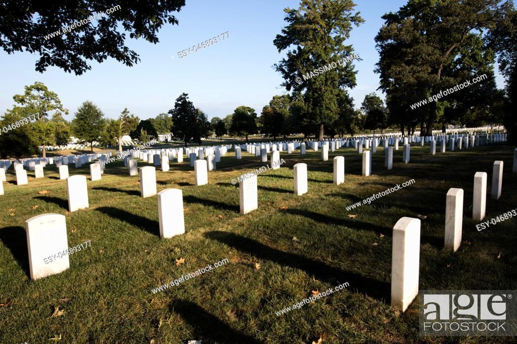 Imagen: Rows of white graves stones in Arlington cemetery, Washington DC.