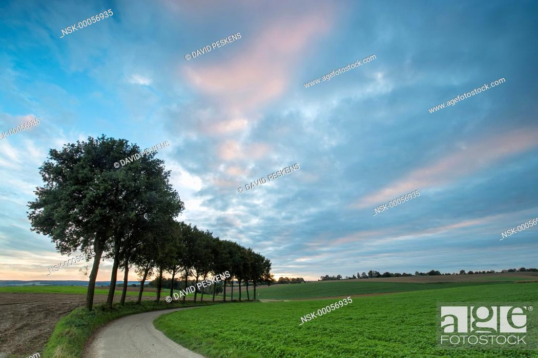 Landscape With Sunset Clouds And Trees Next To A Road The