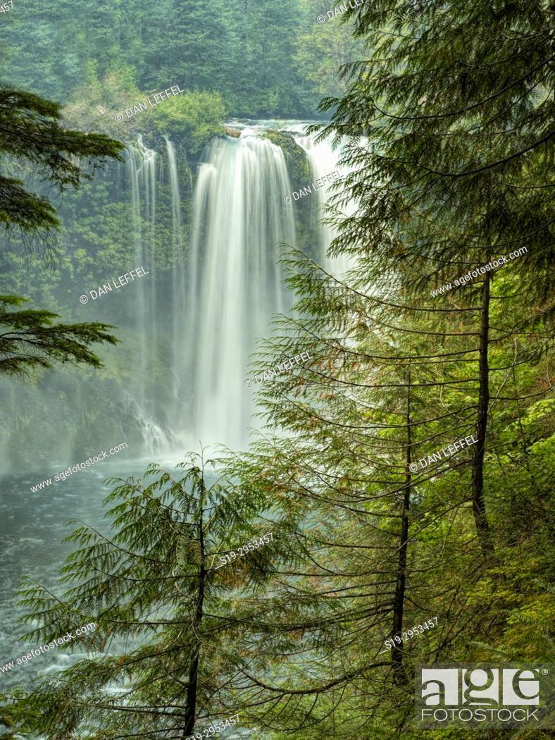 Stock Photo: McKenzie River Oregon. USA.
