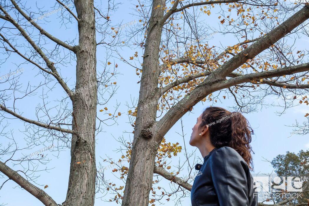 Stock Photo: Young woman in a leather jacket standing next to a tree with no leaves.
