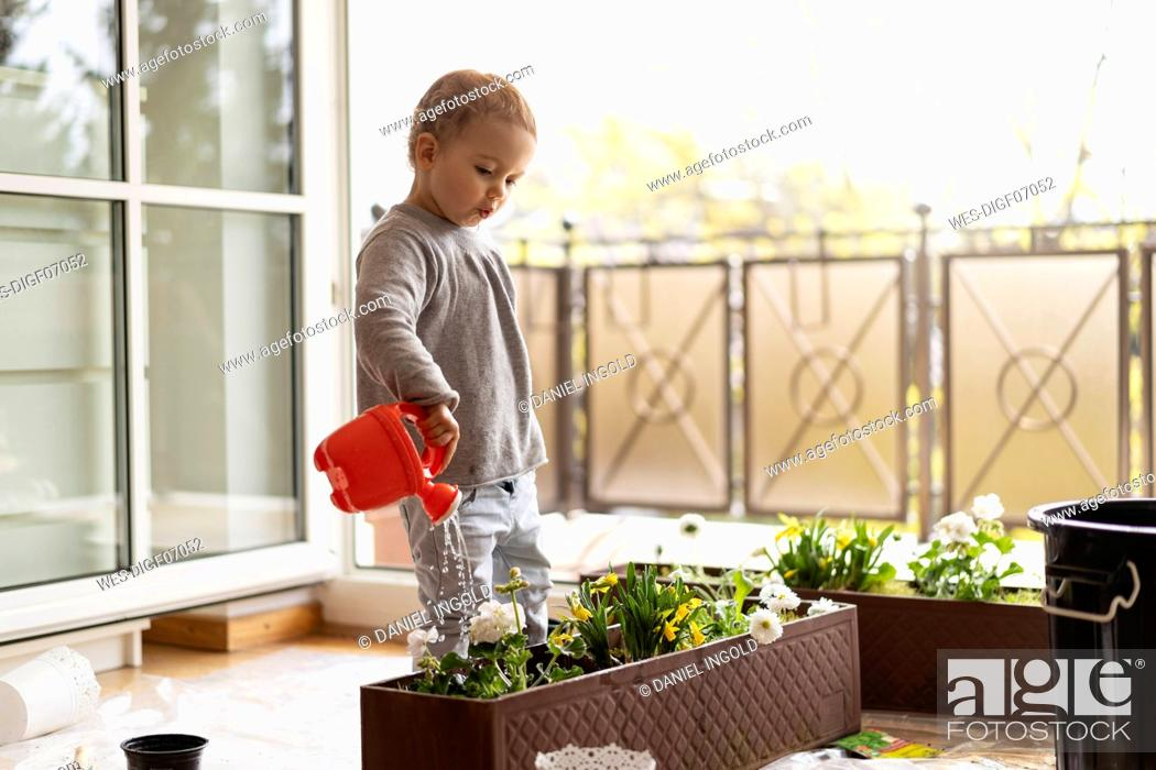 Stock Photo: Cutle little girl watering flowers at home.