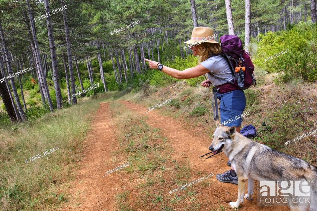 Stock Photo: Hiker mature young woman with a hat and a dog in a path. Frias town, Burgos, Castile and Leon, Spain.