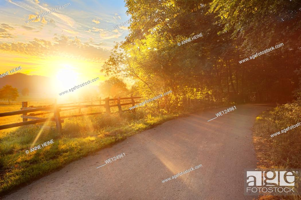 Stock Photo: road leading into forest, sun rising above haarstrang, shining into foggy moehnetal, location: warstein-belecke, sauerland, germany.