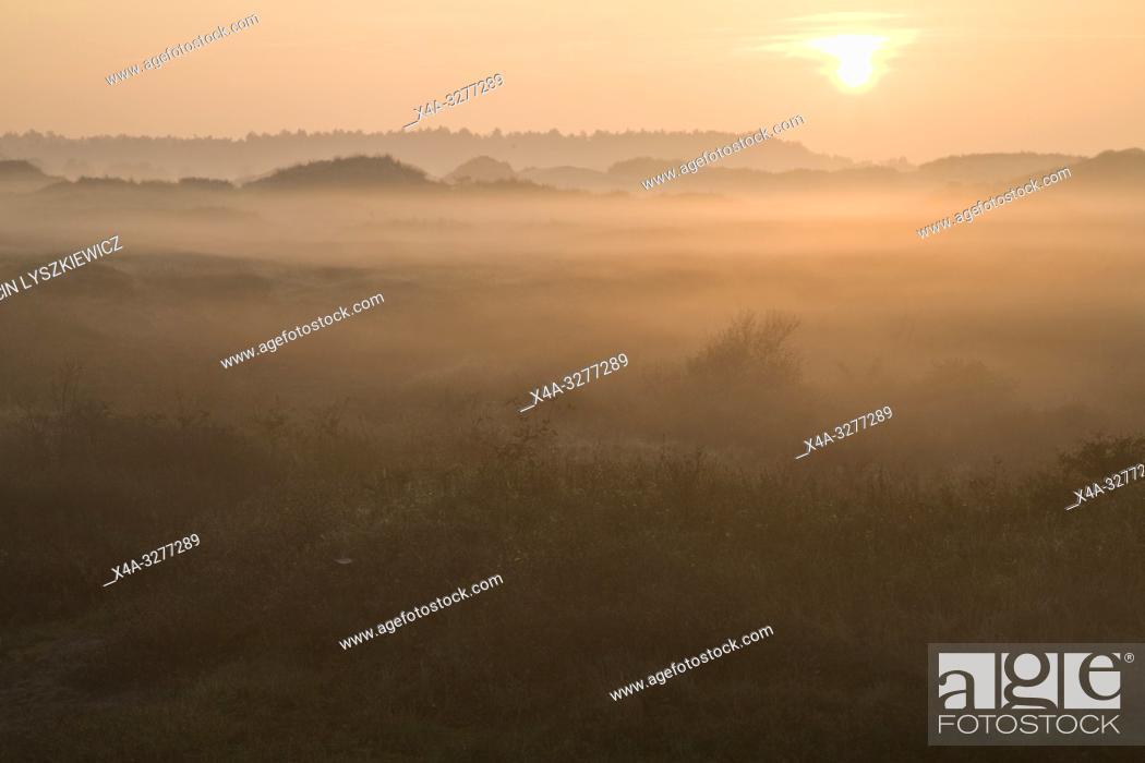 Imagen: dunes on Wadden Sea coast, Schiermonnikoog island, Netherlands.
