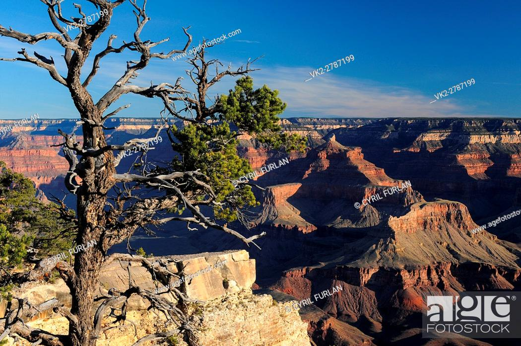 Stock Photo: Mather Point Just After Sunrise, South Rim Grand Canyon Arizona, United States.