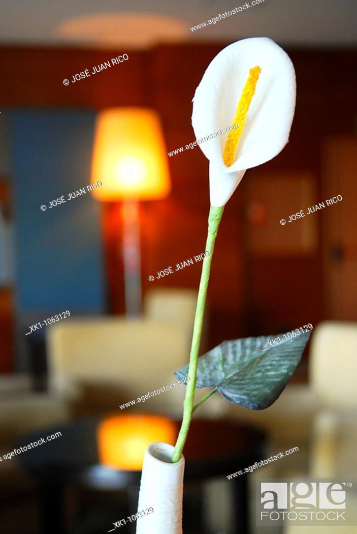 Stock Photo: Flower decoration.