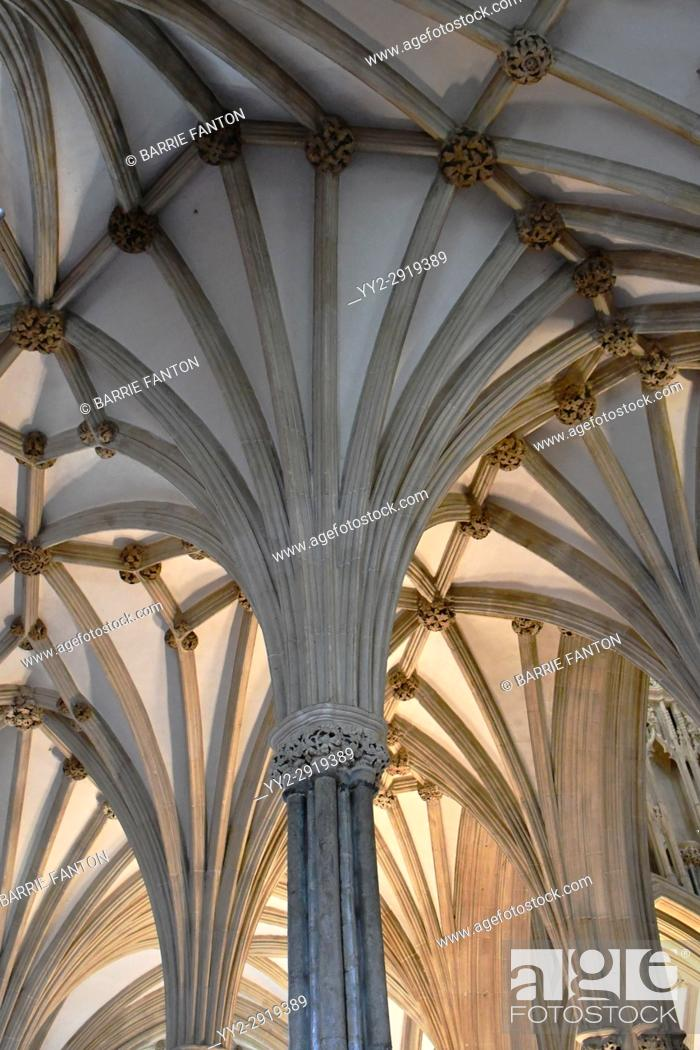 Stock Photo: Fan Vaulted Ceiling, Chapter House, Cathedral Church of Saint Andrew, Wells Cathedral, Wells, England.