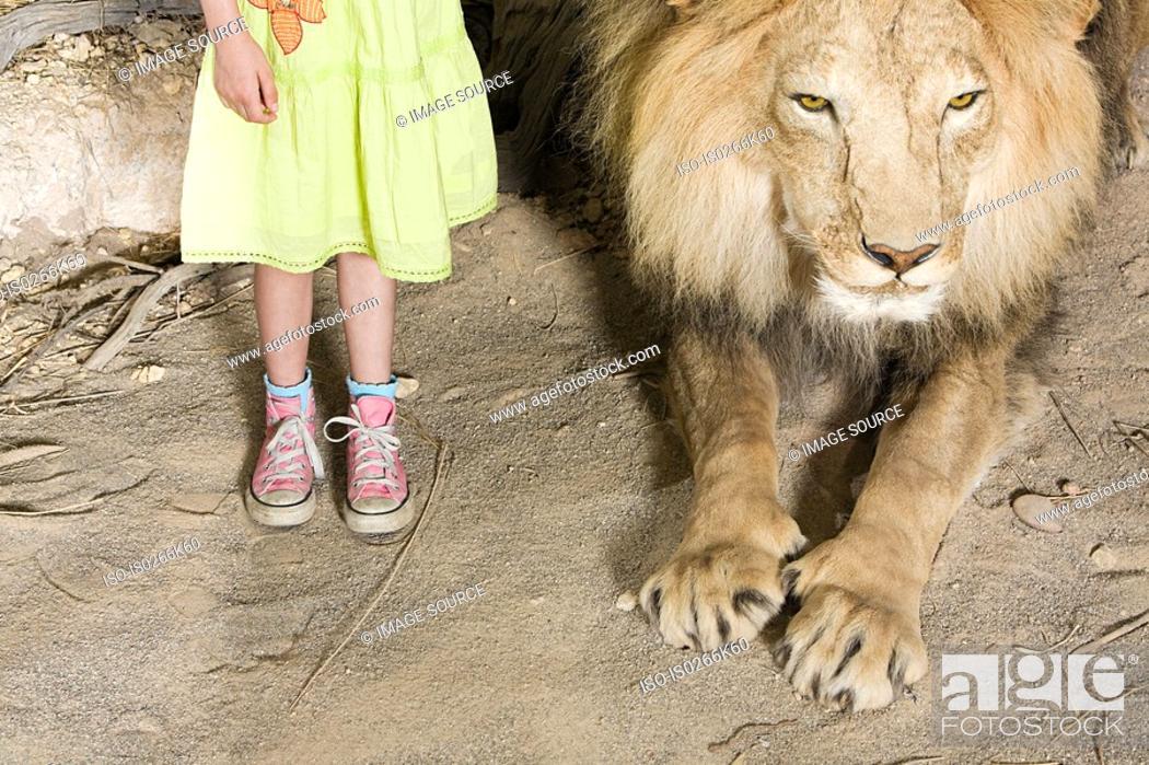Stock Photo: Girl standing beside a stuffed lion.