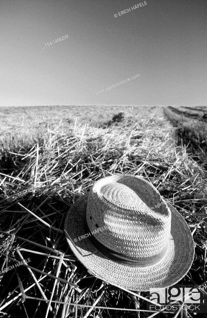 Stock Photo: Straw hat on a harvested grain field.